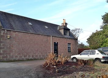 Thumbnail 2 bedroom semi-detached house to rent in Drum Castle, Drumoak, Banchory, Kincardineshire