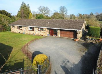 Thumbnail 4 bed detached bungalow for sale in Titley, Herefordshire