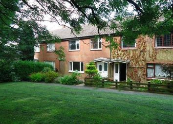 Thumbnail 3 bed property to rent in Mount Pleasant, Whittle-Le-Woods, Chorley