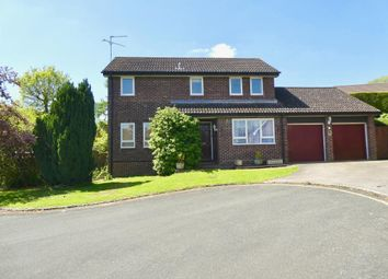 Thumbnail 4 bed detached house to rent in Lombardy Drive, Woodlands, Maidstone, Kent