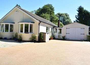 Thumbnail 4 bed detached bungalow to rent in Halls Lane, North Kelsey, Market Rasen