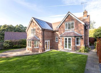 Thumbnail 5 bed detached house to rent in Pantings Lane, Highclere, Newbury, Hampshire