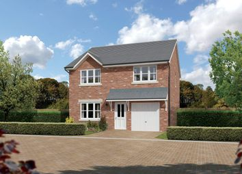 "Thumbnail 4 bedroom detached house for sale in ""Denewood"" at Cherrytree Gardens, Bishopton"