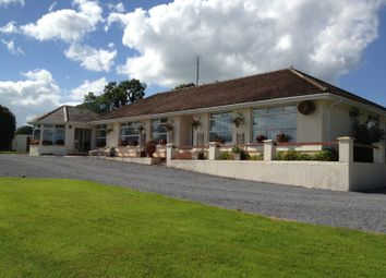 Thumbnail 3 bed detached bungalow for sale in Firgrove Reacarrigeen Ballinascarthy Clonakilty, Ballinascarthy Clonakilty, Ireland