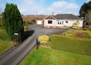 Thumbnail 3 bed bungalow for sale in Burnhead Road, Blairgowrie