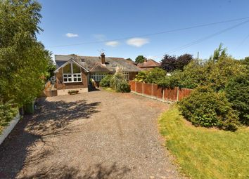 Thumbnail 5 bedroom semi-detached house for sale in Lightwater, Surrey