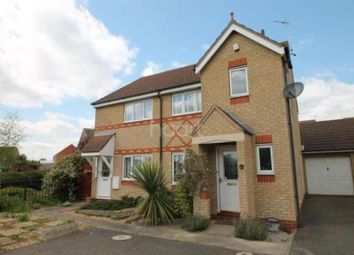 Thumbnail 3 bed property to rent in Brodsworth Road, Peterborough