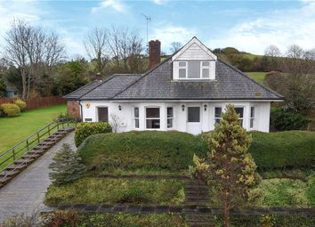 Thumbnail 6 bed detached house for sale in Cattistock, Dorchester, Dorset