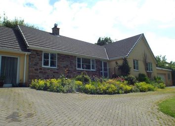 Thumbnail 4 bed bungalow for sale in Ashwater, Beaworthy, Devon