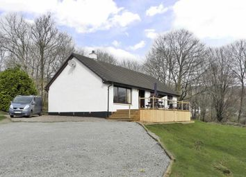 Thumbnail 3 bed detached bungalow for sale in Upper Scotstown, Strontian