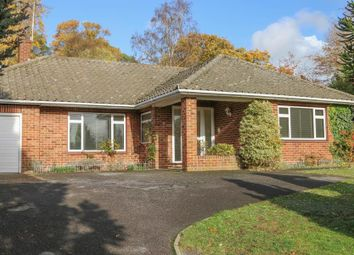 Thumbnail 4 bed detached bungalow to rent in Twinoaks, Cobham
