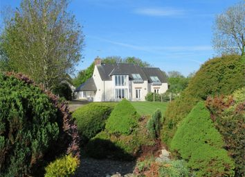 Thumbnail 4 bedroom detached house for sale in Golwg-Yr-Ynys, Brynhenllan, Dinas Cross, Newport, Pembrokeshire