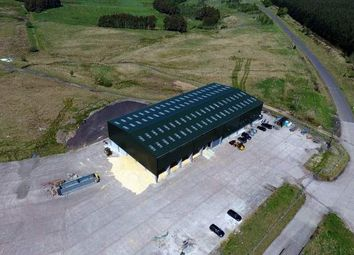 Thumbnail Light industrial to let in Distributor Road, Poniel