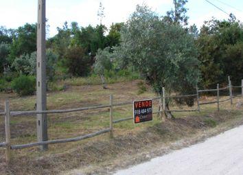 Thumbnail Land for sale in Alverangel, Tomar, Santarém, Central Portugal
