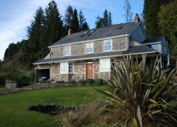 Thumbnail 5 bed detached house for sale in Llanwrda, Llandovery