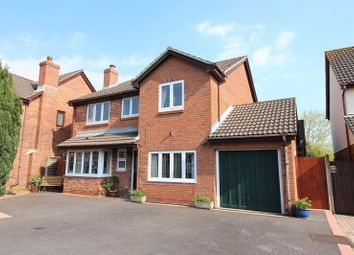 Thumbnail 6 bed detached house for sale in Campion Close, Warsash, Southampton