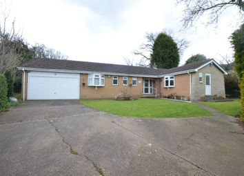 Thumbnail 3 bed detached bungalow to rent in Orchard Terrace, Cawthorne, Barnsley