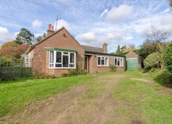 Thumbnail 4 bed bungalow for sale in Little London, Albury, Guildford