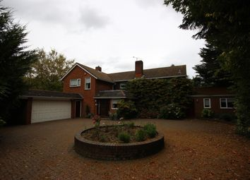 Thumbnail 4 bed detached house to rent in Oak Way, Harpenden