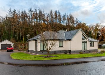Thumbnail 3 bed detached bungalow for sale in Doonhill Woods, Newton Stewart