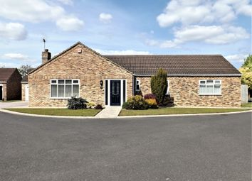 Thumbnail 4 bed detached bungalow for sale in Castle Drive, Holbeach, Spalding