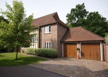 Thumbnail 4 bed detached house to rent in Red Bushes Close, Medstead, Alton