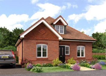 Thumbnail 3 bedroom bungalow for sale in Lymington Bottom Road, Medstead, Alton, Hampshire