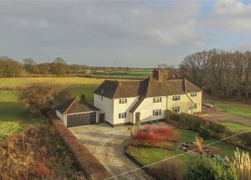 Thumbnail 4 bed semi-detached house for sale in Countess Cross, Colne Engaine, Colchester