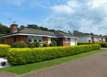 Thumbnail 4 bed detached bungalow for sale in Turnberry Avenue, Dumfries