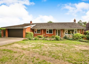 Thumbnail 4 bed detached bungalow for sale in Whinburgh Road, Westfield, Dereham
