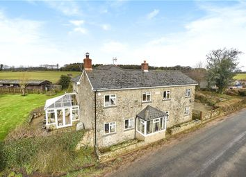 Thumbnail 4 bed equestrian property for sale in Stafford Cross, Colyton, Devon