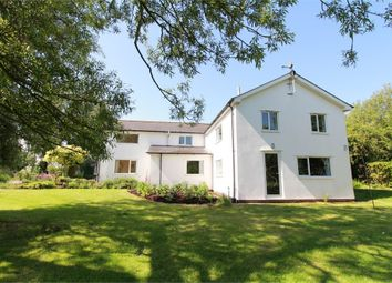 Thumbnail 4 bed detached house for sale in St Brides, Wentlooge, Newport