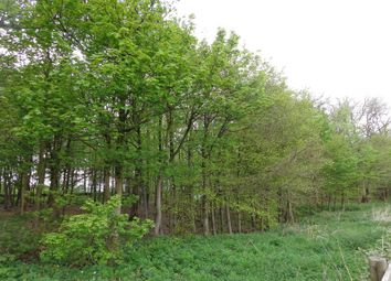Thumbnail Land for sale in Hartington, Buxton