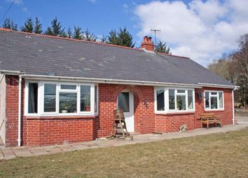 Thumbnail 3 bed detached bungalow for sale in Pant-Y-Dwr, Rhayader