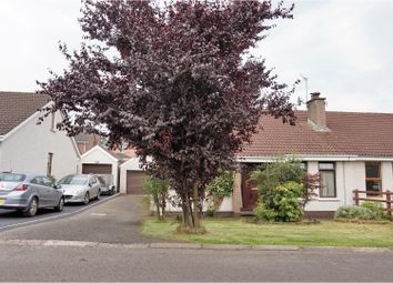 Thumbnail 3 bedroom bungalow for sale in Portmore Lea, Lower Ballinderry, Lisburn