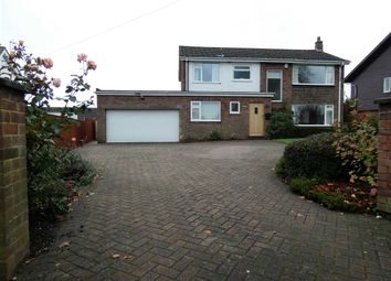 Thumbnail 4 bed detached house for sale in Riby Road, Keelby, Grimsby