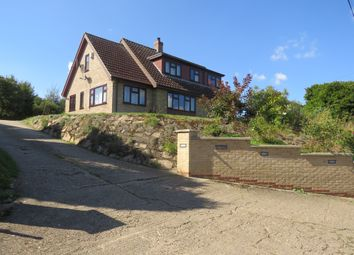 Thumbnail 4 bed detached house for sale in Bridewell Lane, Botesdale, Diss