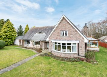 Thumbnail 5 bed detached house for sale in Park Road, Brechin, Angus