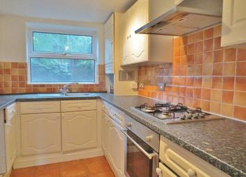 Thumbnail 4 bed terraced house to rent in Hollingdean Road, Brighton