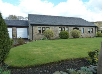 Thumbnail 4 bed bungalow to rent in Northcote Road, Langho