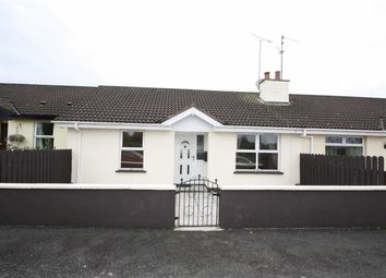 Thumbnail 2 bed semi-detached bungalow to rent in Moybrick Grove, Dromara, Down