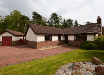 Thumbnail 3 bed detached bungalow for sale in Low Chesters, Swarland, Morpeth