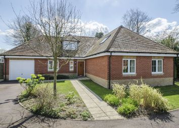 Thumbnail 4 bed detached house to rent in Grove Place, Winchester