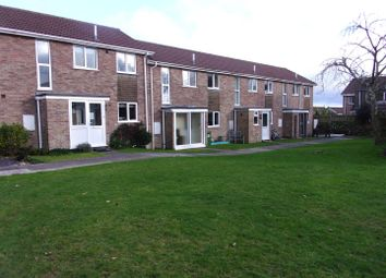 Thumbnail 3 bed terraced house to rent in Lower Woodside, Trewoon, St. Austell