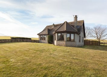 Thumbnail 4 bed detached house for sale in Hatton, Hatton, Peterhead, Aberdeenshire