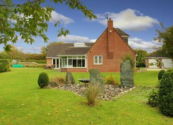 Thumbnail 4 bed detached house for sale in Kiln Row, North Cave, Brough