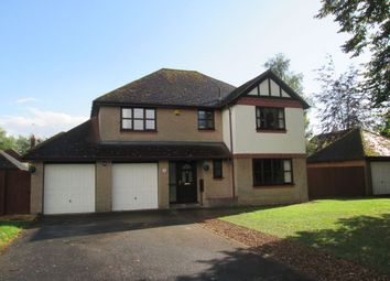 Thumbnail 4 bed detached house to rent in Marlborough Court, Wisbech