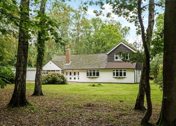 Thumbnail 4 bed detached house for sale in Oldhill Wood, Studham, Dunstable, Bedfordshire