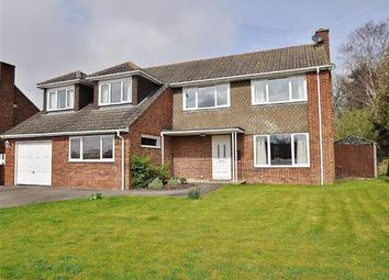 Thumbnail 5 bed detached house for sale in Orchard Close, Mersham, Ashford