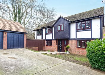 Thumbnail 4 bed detached house for sale in Roseberry Close, Basingstoke